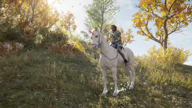 Why have a horse when you can have a unicorn?